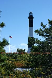 Fire Island Lighthouse with Pines